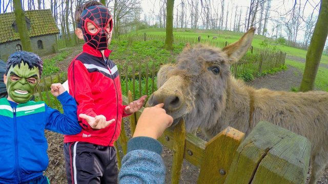 Little Spider Man and Mini Hulk play in the Children's Park and familiarity with funny donkey
